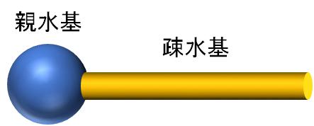 界面活性剤のイメージ図
